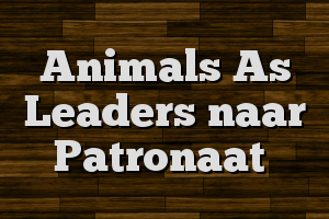 Animals As Leaders naar Patronaat