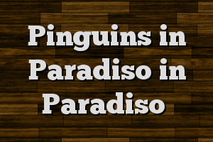 Pinguins in Paradiso in Paradiso