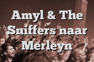 Amyl & The Sniffers naar Merleyn
